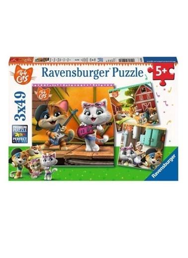 Ravensburger 3x49 Puzzle Cats RPK050130 Renkli